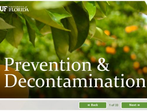 Citrus Prevention and Decontamination Compliance Course